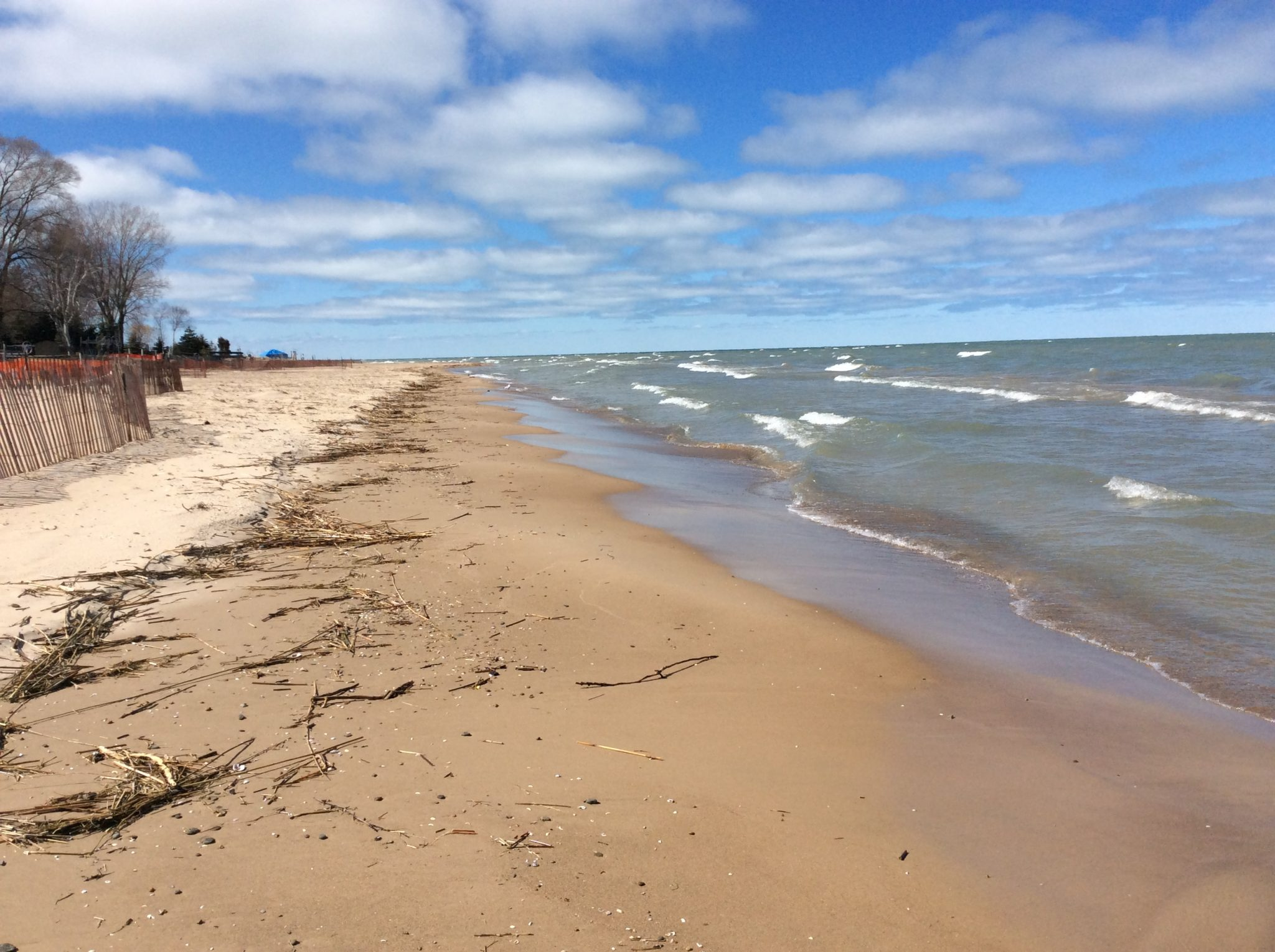 Beach on Saginaw Bay During Low Water in 2016