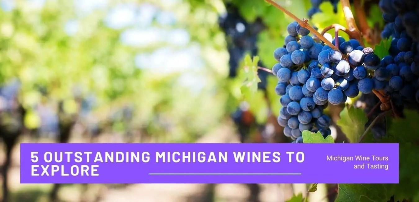 Michigan Wines