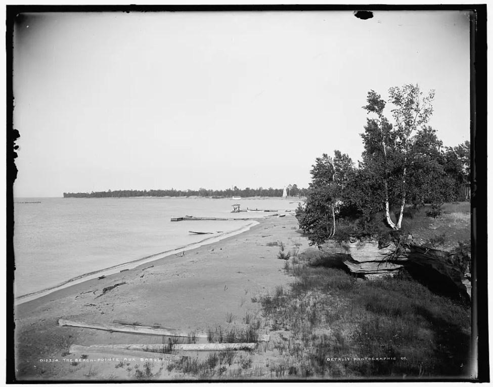 The Beach at Pointe Aux Barques
