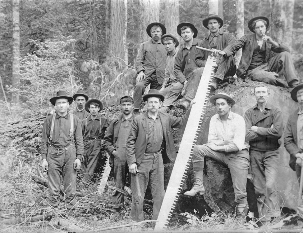 Loggers-two-man-saw - Vanished Company Town
