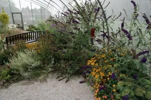 Port Austin Butterfly House