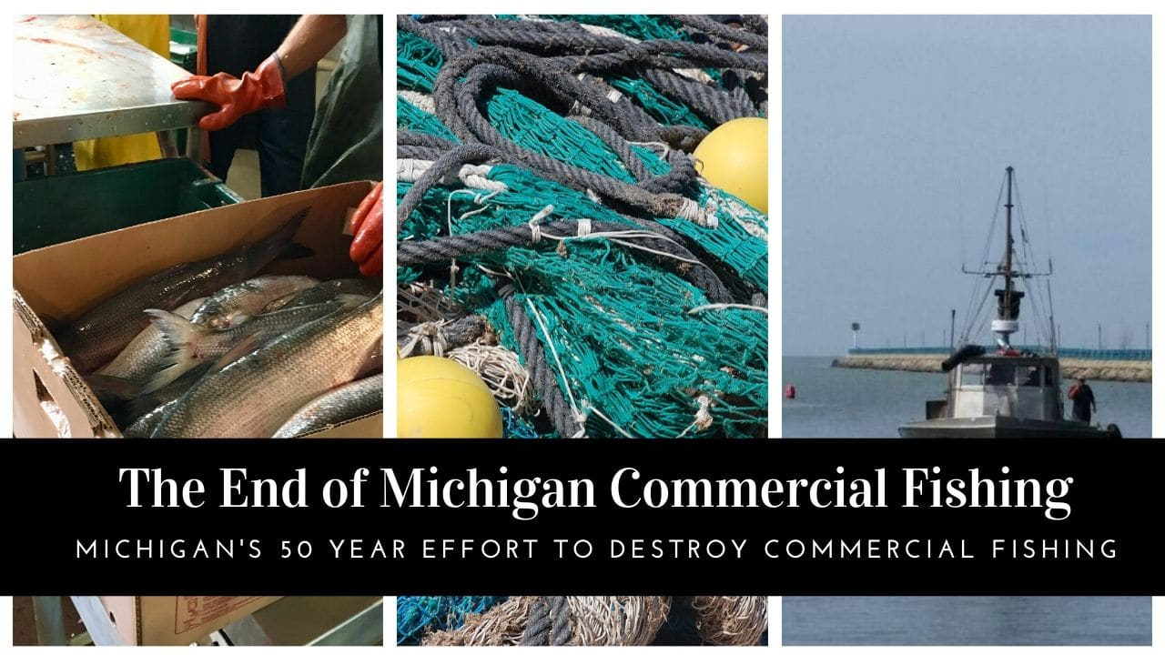 Michigan Commercial Fishing