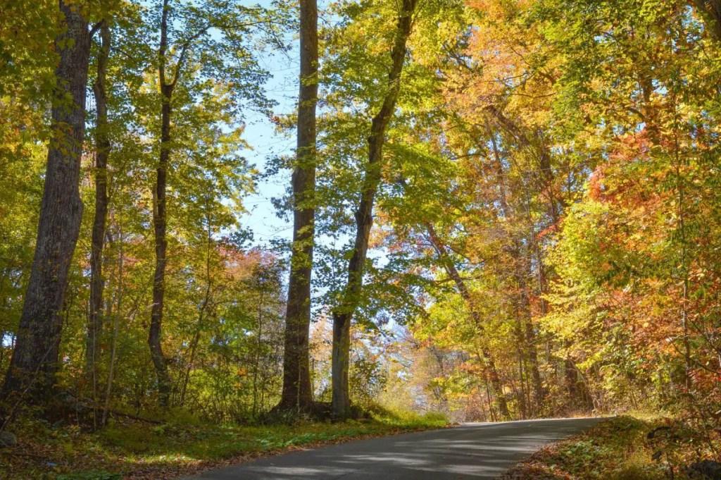 Fall Road Trip -