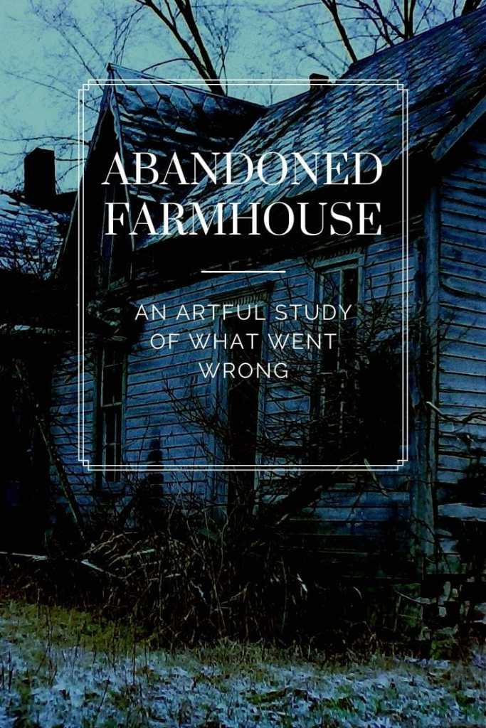 We are sometimes drawn to an abandoned farmhouse or structure  not because of it's beauty, but because we think there is a story. We want to know what went wrong.