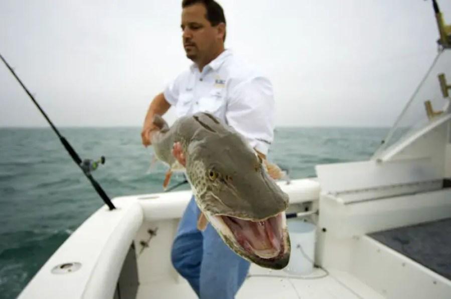 Muskie - Michigan Commercial Fishing Bills