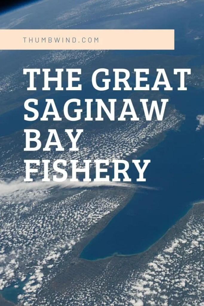Saginaw Bay Fishery