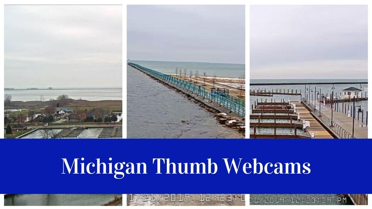 Michigan Webcams
