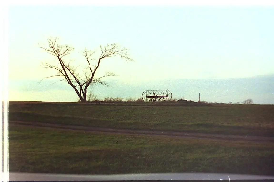 Hay Rake Lonely Tree