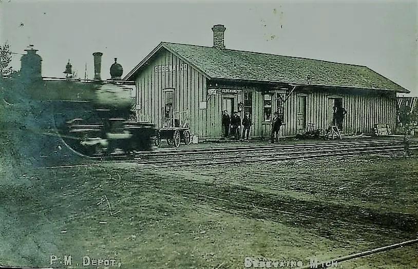 Sebewaing depot train