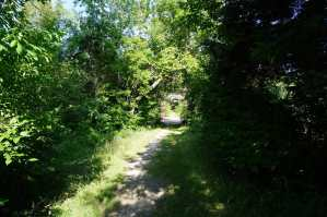 Trail to Old Iron Bridge at Port Crescent State Park