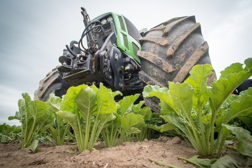 Sugar Beet Tractor