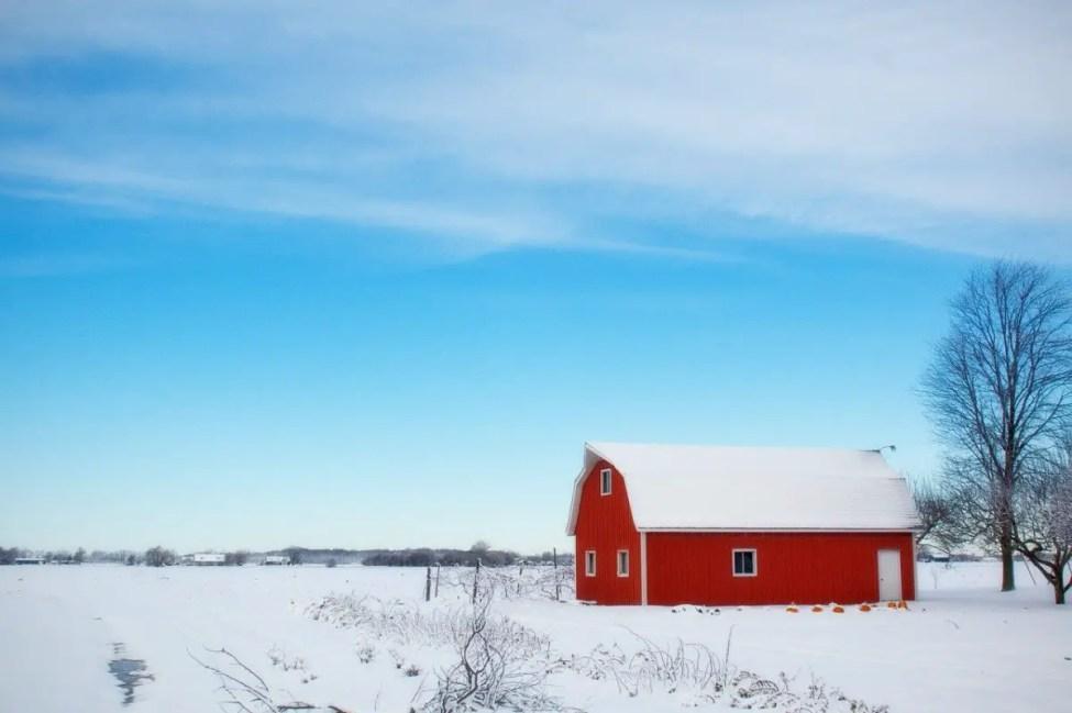 Non-Homestead Farmland