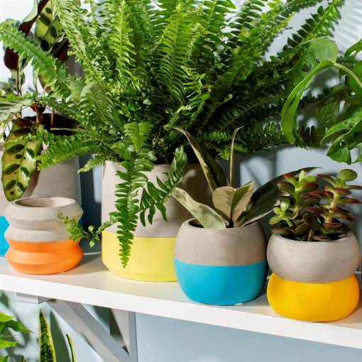 Sass & Belle - Colour Block Cement Mini Planters
