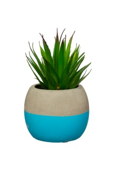 Sass & Belle - Colour Block Cement Mini Planter in Blue