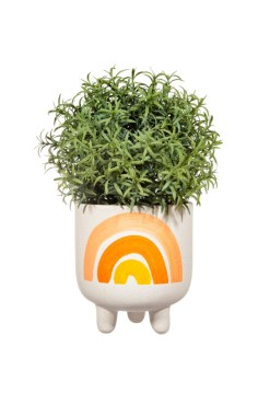 Sass & Belle - Earth Rainbow Planter on Legs