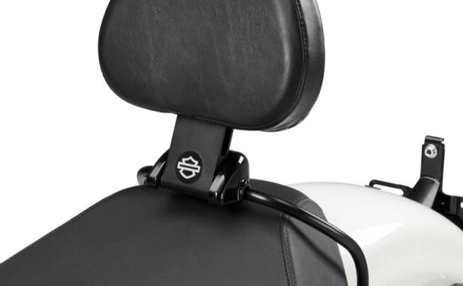 Harley-Davidson XL Detachable Rider Backrest