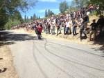 Redwood Run 2014