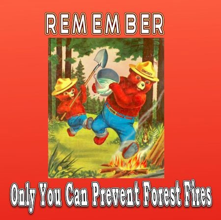 smokey the bear graphic