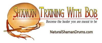 Shaman Training Graphic600w