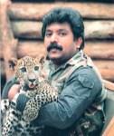 prabha-tiger