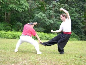 doug 5-Chin Woo fighting form, taken in Singapore 2007, with Chow Tong Sifu