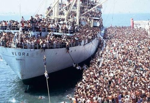 tramp steamer refugees 55