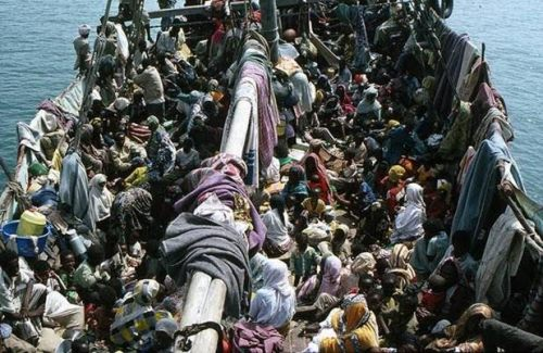 tramp steamer refugees 66