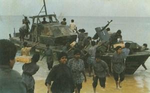 38a-sea tigers-resized