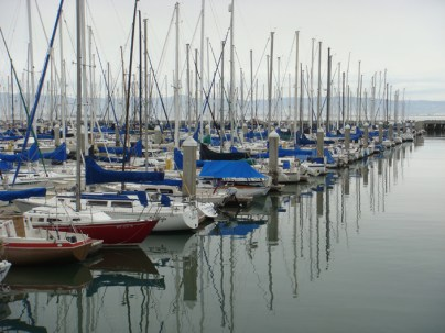 A Wall of Masts - m
