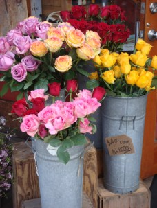 Roses For Sale - m
