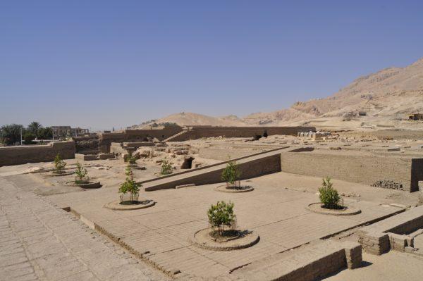 Perseas en la 13ª Campaña 2020 del yacimiento del templo de Tutmosis III