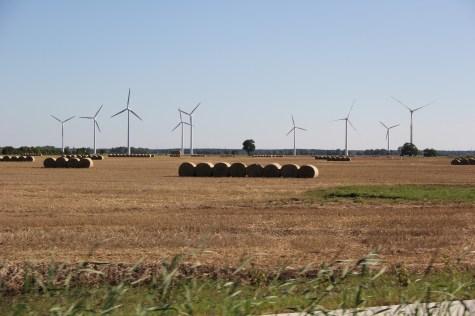 Die Landschaft im Jerichower Land