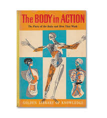 golden-book-of-knowledge_body-in-action