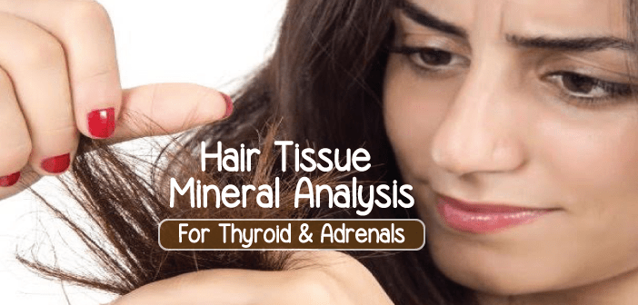 Healing-Thyroid-And-Adrenals-With-Hair-Tissue-Mineral-Analysis