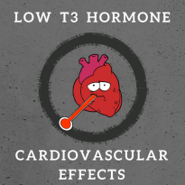 Low T3 hormone Cardiovascular