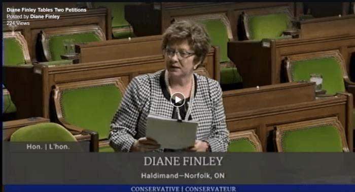dianefinley-petition-screenshot-small