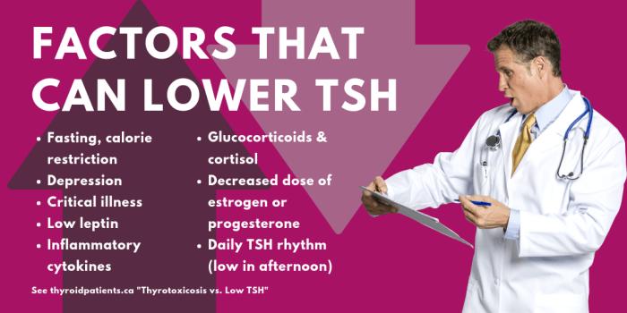 5-factors-lowtsh