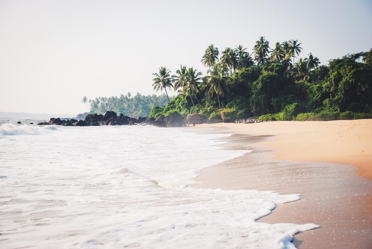 costa malabari kerala