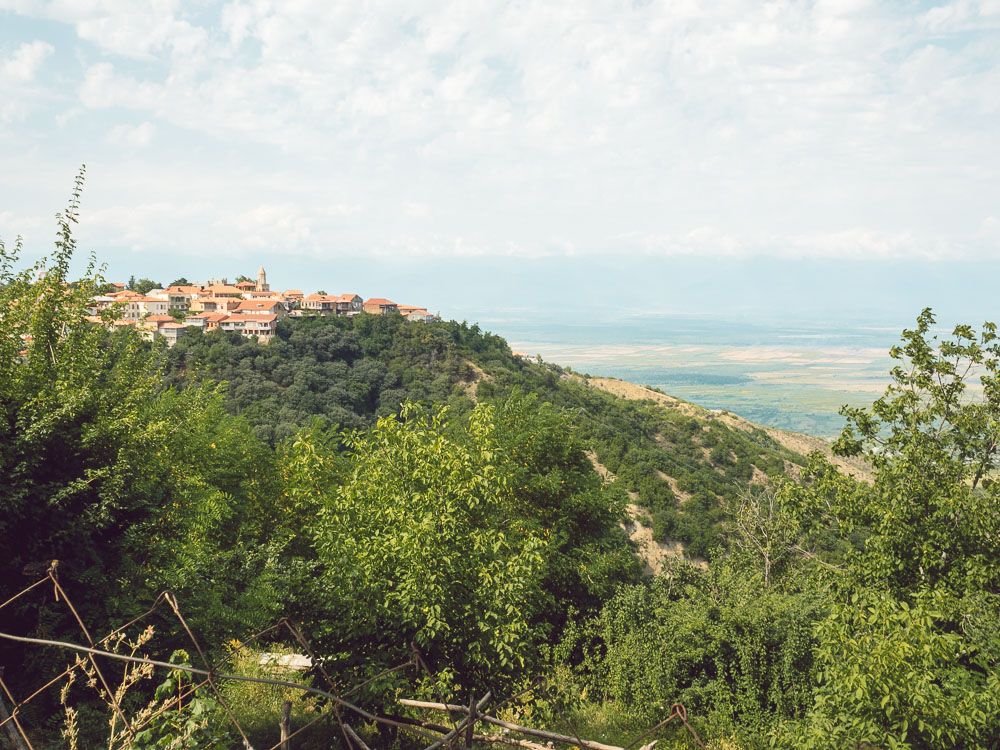 Vista su Sighnaghi