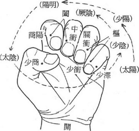 Illustration dans la main des six niveaux de la théorie des méridiens