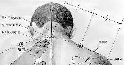 Puits de l'épaule (肩井: jīan jǐng) est le vingt-et-unième point du méridien de la vésicule biliaire.