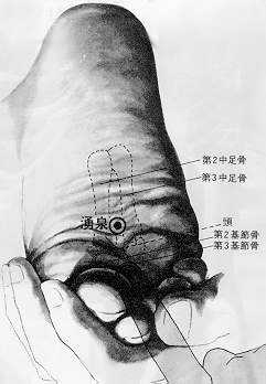 Source jaillissante, 涌泉yǒng quán, est le premier point du méridien du rein.