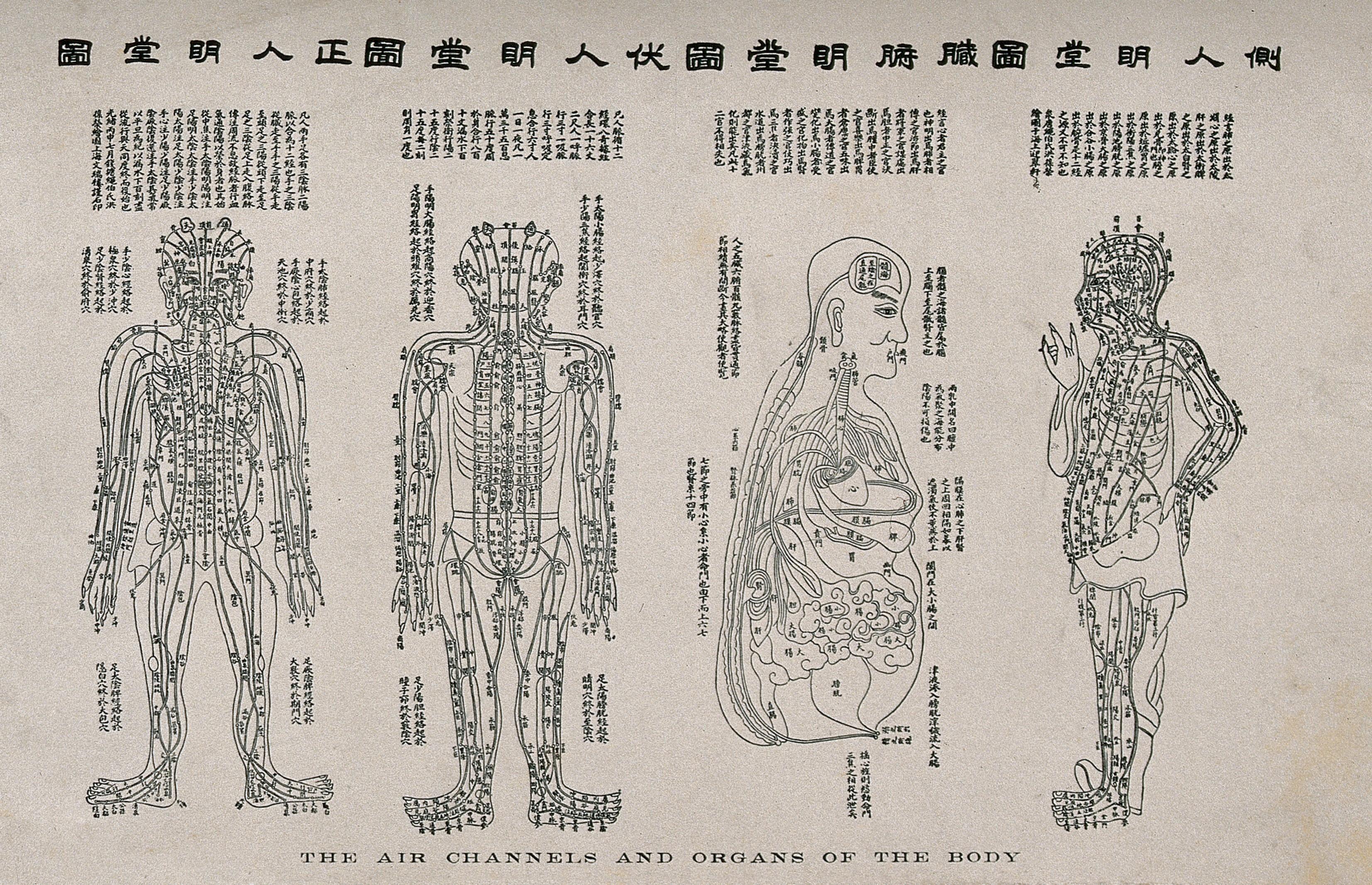 Les textes fondateurs de l'acupuncture