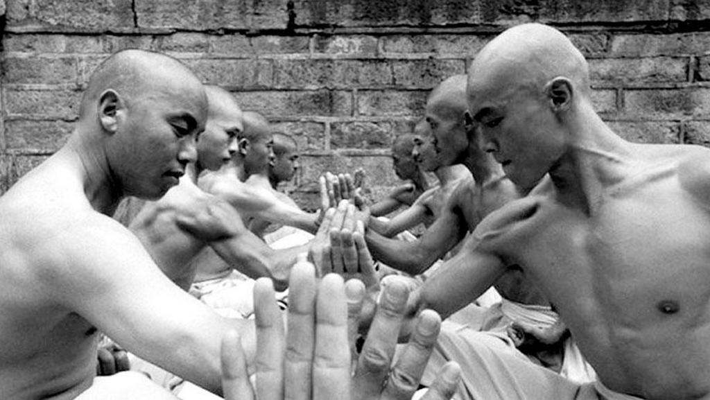 Vingt points d'acupuncture qu'un artiste martial devrait connaître