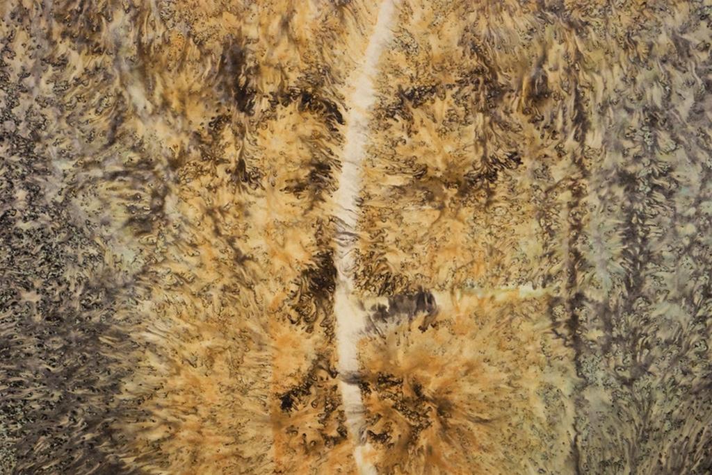 Sagesse transcendante adamantine, 2002. Encre et techniques mixtes sur papier, Maître Shen-Long