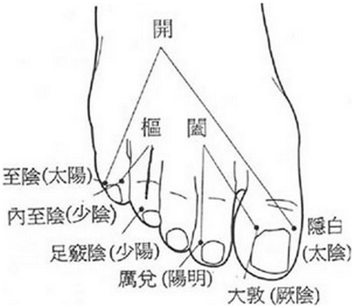 開 kāi, 樞 shū et 闔hé au niveau du pied