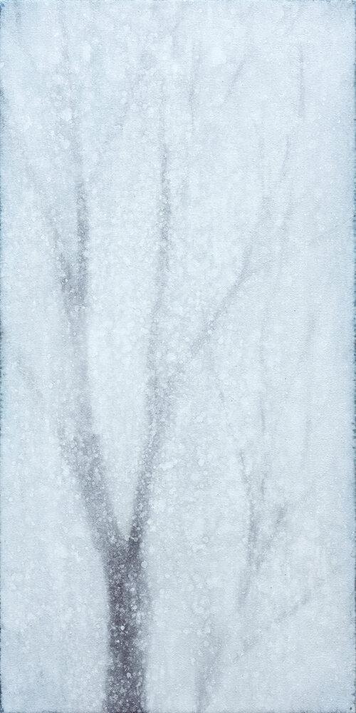 Yuki, l'hiver, 2020, Takashi Harada