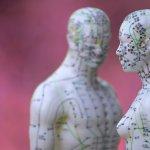 Modèle d'acupuncture masculin et féminin sur fond rouge