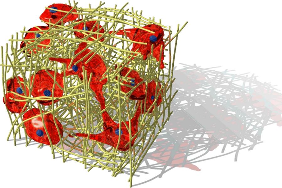 Représentation de cellules enchâssées dans la trame fibrillaire conjonctive