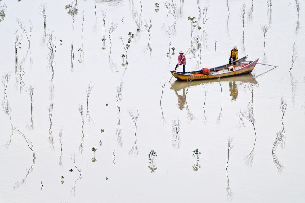 Forêt de mangrove d'E-Wan à Xiapu, photographie de Kah-Wai Lin